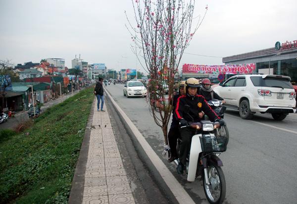 Nơi đây có địa chỉ nổi tiếng là làng hoa Nghi Tàm - Quảng Bá