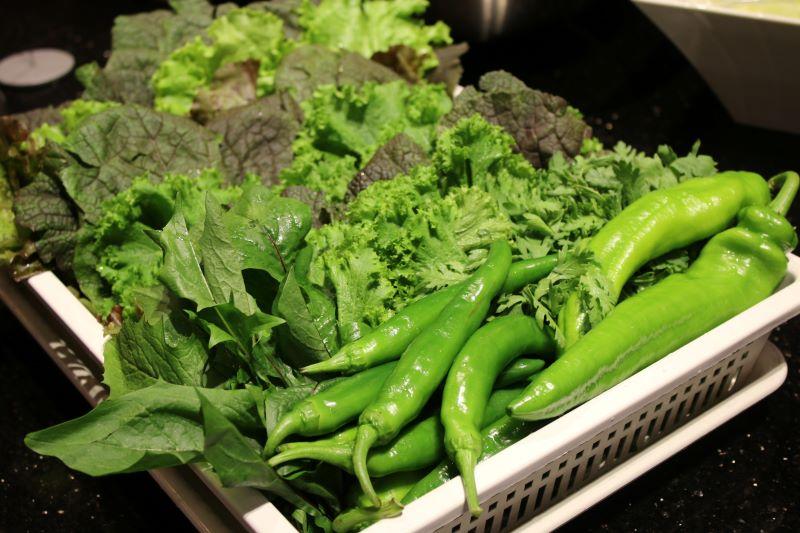 Rau sạch hữu cơ được trồng tại nông trường Meat Plus luôn đảm bảo độ tươi ngon tối ưu
