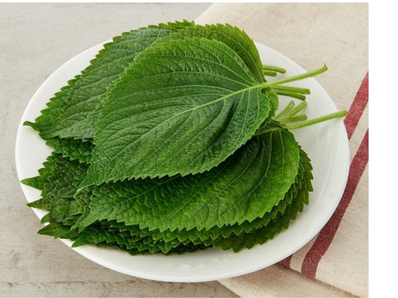 Lá kê nhíp là loại rau của Hàn Quốc còn có tên gọi lá vừng hay lá mè.